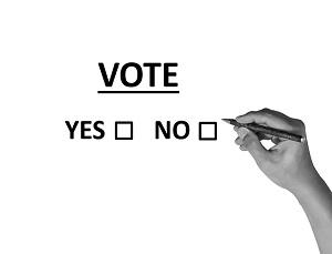 student council voting