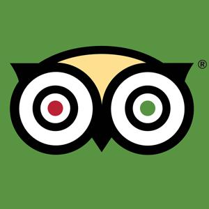 apps for solo travelers: tripadvisor