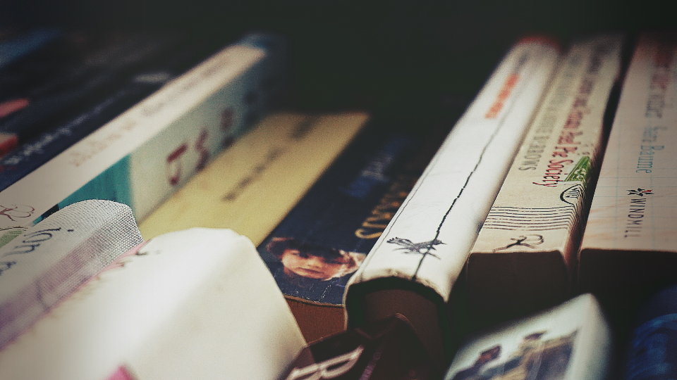 As a senior high school student, reading art books helps you see the world in a different vantage point.