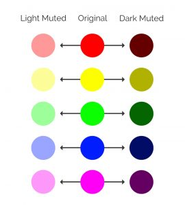 A brief guide on light muted, original, and muted colors from Venngage